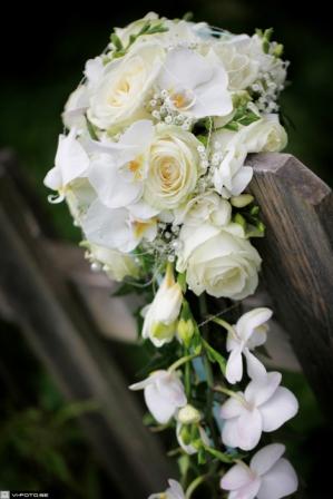 Vita blommor på staket