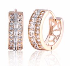 Örhängen med Cubic Zirconia och i Platinum- och 18 K Guldplätering