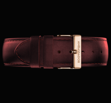 AMBASSADOR -Burgundy Leather / Gold 20mm Strap